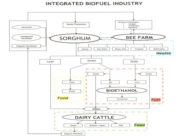 integrated-biofuel-industry